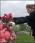 _1964397_widow_2_150.jpg